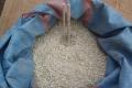maben-pl-sprzedajemy-przemialy-aglomeraty-skupujemy-odpady-tworzyw (1)